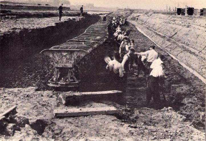 DiggingBosbaan