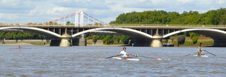Pic 17. Grosvenor Rail Bridge and Chelsea Bridge. The winner is clear but the fight is on for second place.