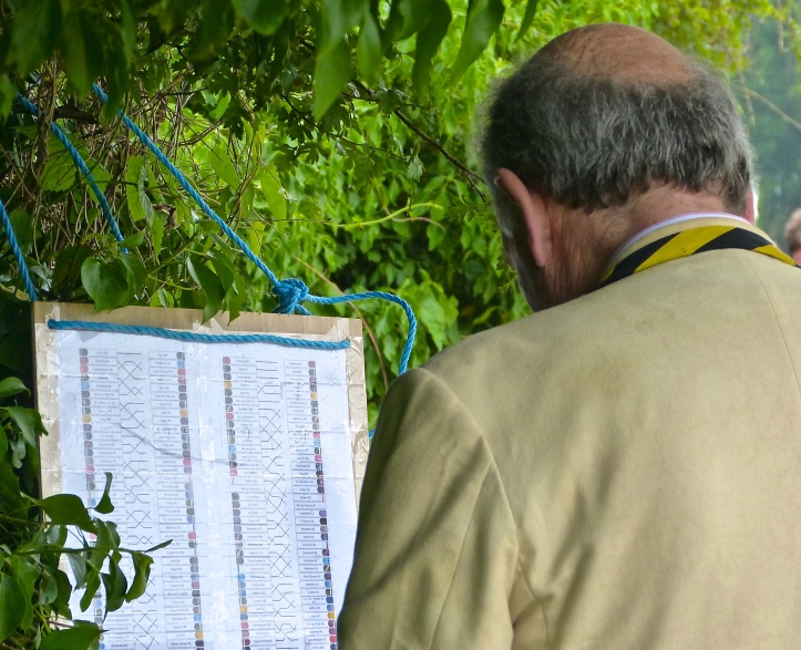 Pic 1. 'How is Clare doing?' An alumnus of Clare College Boat Club checks a bumps chart hung along the towpath on the final day of the 2015 'Mays', Saturday 13 June.