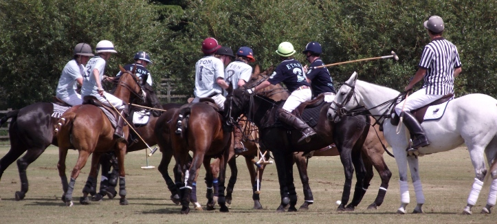 Pic 8. Intraschool polo match, 'Fourth of June', 2011.