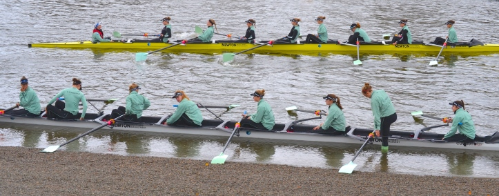 Pic 1. The two Cambridge University Women's Boat Club (CUWBC) Trial Eights crews for the 2016 Newton Women's Boat Race. The white boat, stroked by Daphne Martschenko, was christened 'Tideway' for the occasion while the yellow boat, stroked by Myriam Goudet, was called 'Twickenham'.