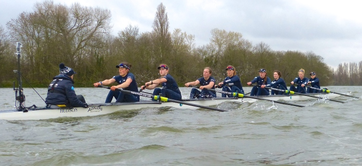 Pic 16. If anywhere on the Putney to Mortlake Course is going to be rough, it is usually Corney Reach at Chiswick.