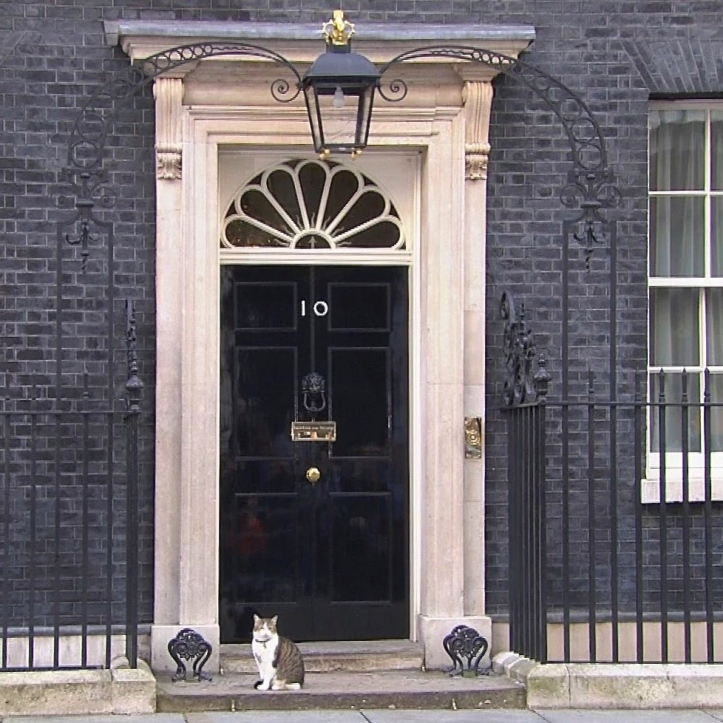 Larry, the 10 Downing Street Cat, has a new owner. Larry is Number 10's official mouser and, as he came from a cat rescue home, he proves that social mobility still exists in Britain.