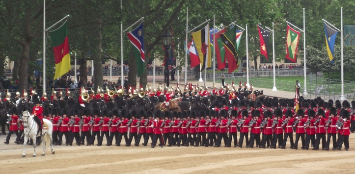 The Household Cavalry, comprising of the Life Guards (red tunics) and Blues and Royals (blue tunics) look on as the Colours pass.