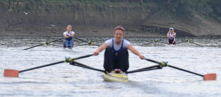 Left to right: Francis, Whittaker, Leyden. Although the final order was set early on, no sculler allowed the one in front of them to relax and the race was properly contested throughout.