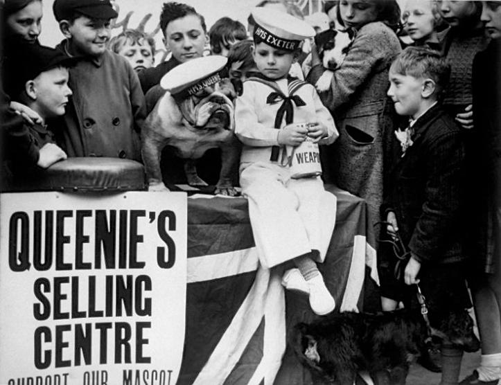Queenie in action.