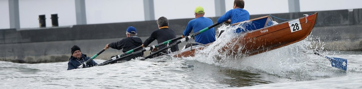 The Rhine Rowing Marathon: A Race for Masochists?